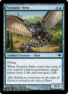 Parasitic Strix, Conflux, Magic the Gathering
