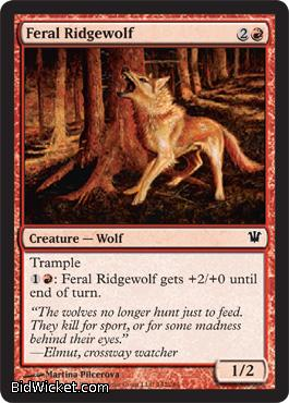 Feral Ridgewolf, Innistrad, Magic the Gathering