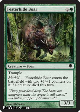 Festerhide Boar, Innistrad, Magic the Gathering
