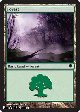 Forest (262), Innistrad, Magic the Gathering