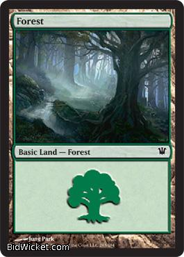 Forest (263), Innistrad, Magic the Gathering