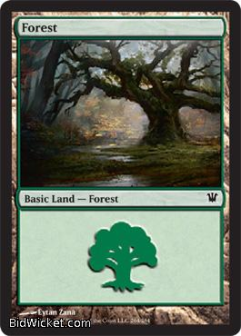Forest (264), Innistrad, Magic the Gathering