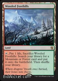 Wooded Foothills,Khans of Tarkir, Magic the Gathering