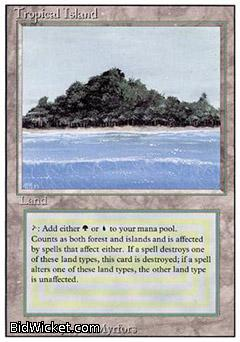Tropical Island, Revised, Magic the Gathering