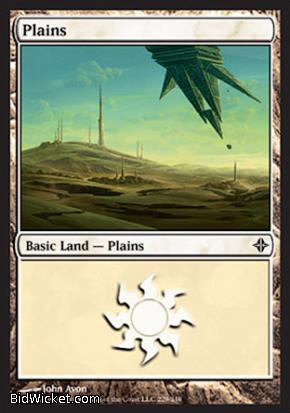 Plains (229), Rise of the Eldrazi, Magic the Gathering