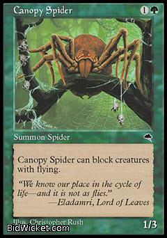 Canopy Spider, Tempest, Magic the Gathering
