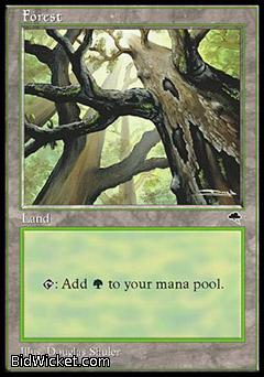 Forest, Tempest, Magic the Gathering