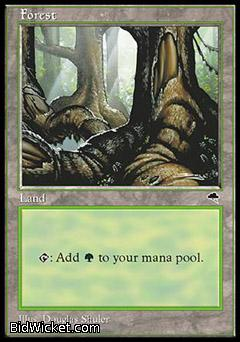 Forest B, Tempest, Magic the Gathering