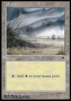 Plains C, Tempest, Magic the Gathering