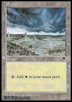 Plains D, Tempest, Magic the Gathering