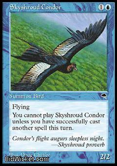Skyshroud Condor, Tempest, Magic the Gathering