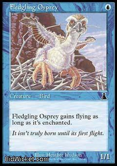 Fledgling Osprey, Urza's Destiny, Magic the Gathering