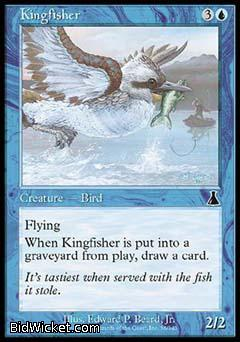 Kingfisher, Urza's Destiny, Magic the Gathering