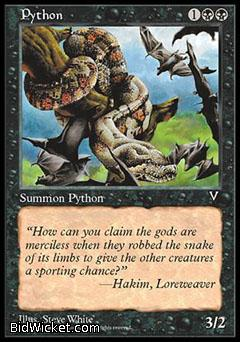 Python, Visions, Magic the Gathering