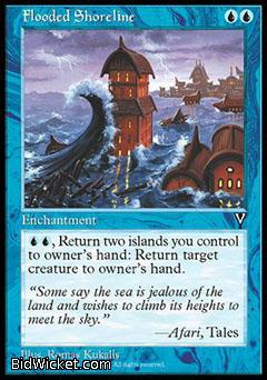 Flooded Shoreline, Visions, Magic the Gathering