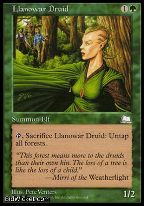 Llanowar Druid, Weatherlight, Magic the Gathering